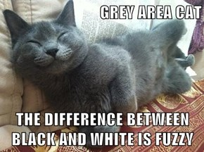 I Lubs the Fuzzy Grey Area Kitty!