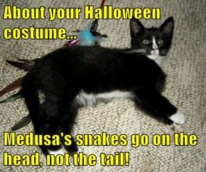 About your Halloween costume...  Medusa's snakes go on the head, not the tail!