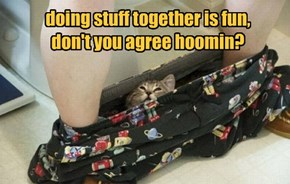doing stuff together is fun, don't you agree hoomin?