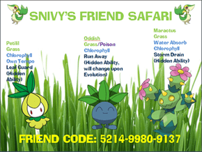 Snivy - Grass Friend Safari
