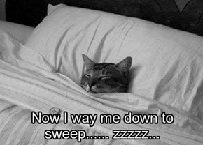 Now I way me down to sweep...... zzzzz...