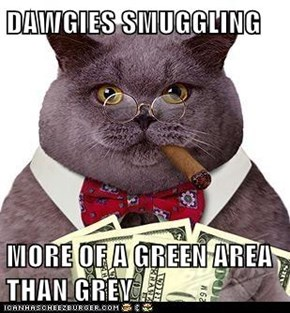 DAWGIES SMUGGLING   MORE OF A GREEN AREA THAN GREY