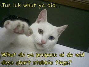Jus luk whut ya did..  Whut do ya prepose ai do wid dese short stubbie fings?