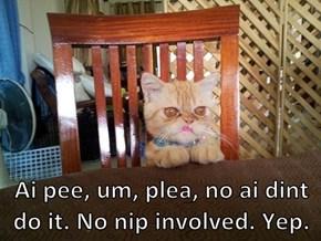Ai pee, um, plea, no ai dint do it. No nip involved. Yep.