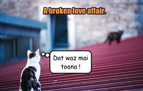 A broken love affair.