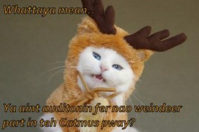 Whattaya mean..   Ya aint auditonin fer nao weindeer part in teh Catmus pway?