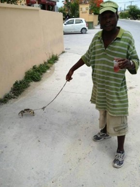 A Man Taking His Crab For a Stroll