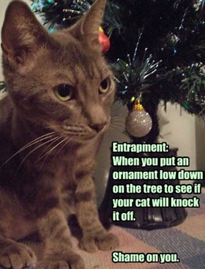 Entrapment:  When you put an ornament low down on the tree to see if your cat will knock it off.   Shame on you.