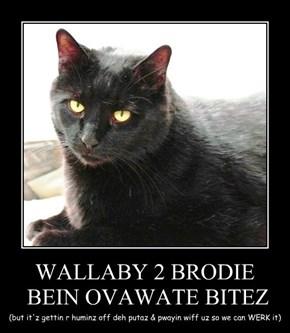 WALLABY 2 BRODIE  BEIN OVAWATE BITEZ