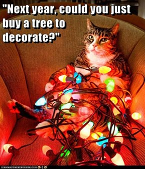 """Next year, could you just buy a tree to                                       decorate?"""