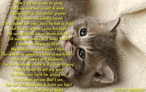 A Cat's Prayer
