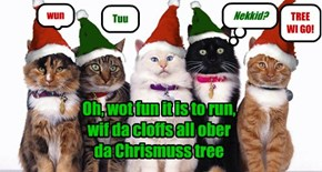 Oh, wot fun it is to run,  wif da cloffs all ober  da Chrismuss tree