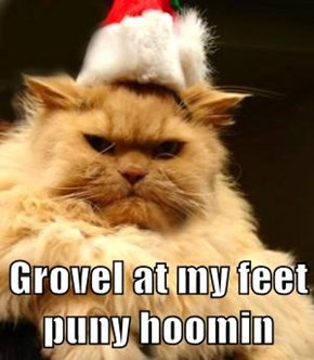 Grovel at my feet puny hoomin