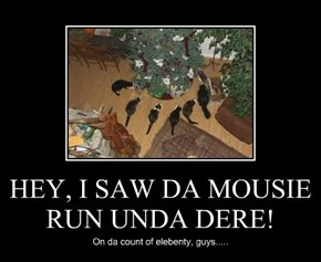 HEY, I SAW DA MOUSIE RUN UNDA DERE!