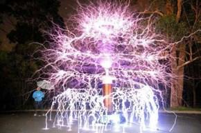 O Tesla Tree O Tesla Tree~
