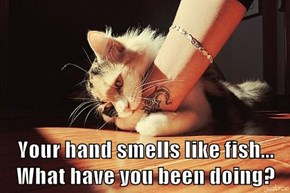 Your hand smells like fish...                What have you been doing?