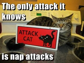 The only attack it knows  is nap attacks