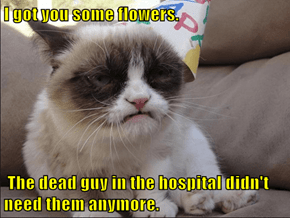 I got you some flowers.   The dead guy in the hospital didn't need them anymore.