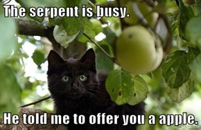 The serpent is busy.  He told me to offer you a apple.