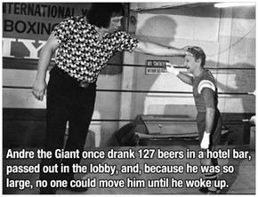 Andre the Giant Was Amazing