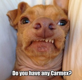 Do you have any Carmex?