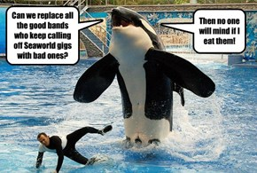 Can we replace all the good bands who keep calling off Seaworld gigs with bad ones?