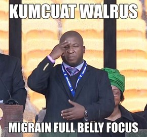What the Nelson Mandela Memorial Interpreter Was Actually Signing