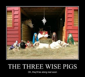 THE THREE WISE PIGS
