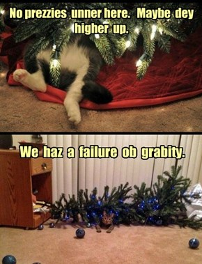 Catmas Physics