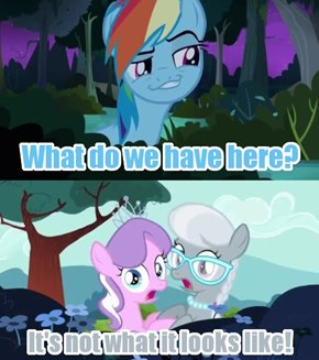 Creepy Dash is Watching You