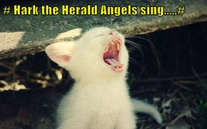 # Hark the Herald Angels sing.....#
