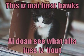 This iz mai furst bawks  Ai doan see what alla fuss iz 'bout