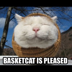 BASKETCAT IS PLEASED