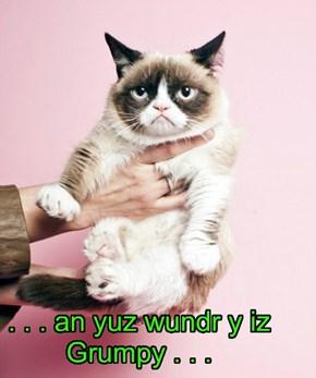 . . . an yuz wundr y iz Grumpy . . .