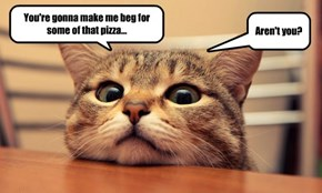 You're gonna make me beg for some of that pizza...