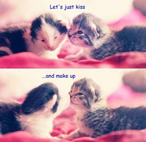 Let's just kiss...and make up