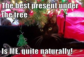 The best present under the tree  Is ME, quite naturally!