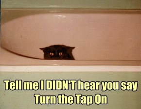 Tell me I DIDN'T hear you say Turn the Tap On