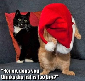 """Honey, does you                                                    thinks dis hat is too big?"""