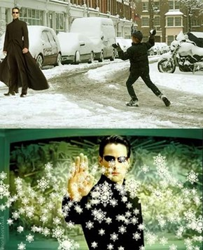 Snowball Fights Are No Fun With Neo