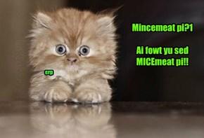 Mincemeat pi?1  Ai fowt yu sed  MICEmeat pi!!