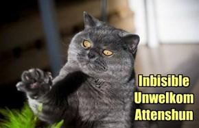 Inbisible Unwelkom Attenshun