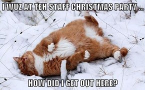 I WUZ AT TEH STAFF CHRISTMAS PARTY ...  HOW DID I GET OUT HERE?