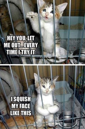 I Want to Let You Out but I Love the Squish!