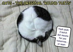 CATS - THE ORIGINAL 'ROUND TUITS'