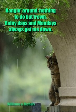 Rainy days and Mondays always get me down.