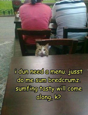 i dun need a menu. jusst  do me sum bredcrumz. sumfing tasty will come along, k?