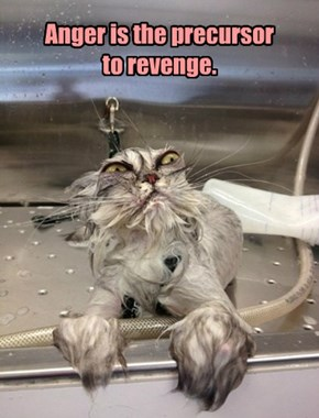 Anger is the precursor to revenge.
