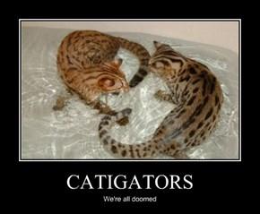 CATIGATORS