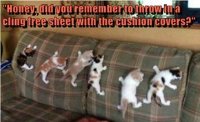 """Honey, did you remember to throw in a cling free sheet with the cushion covers?"""